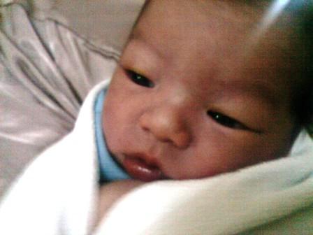 baby enzo